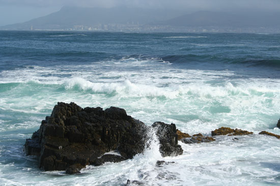 south africa robben island landscape view