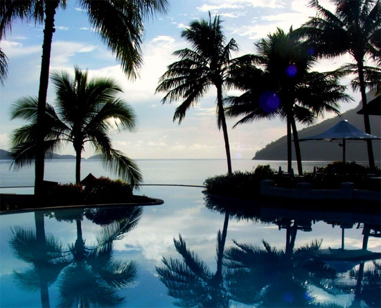 australia whitsunday islands hamilton island palm trees pool