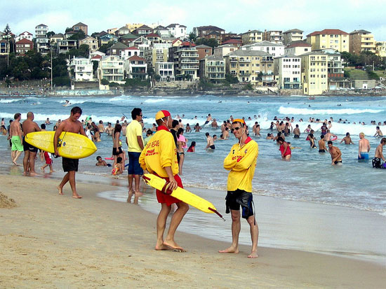 australia sydney bondi beach lifeguards