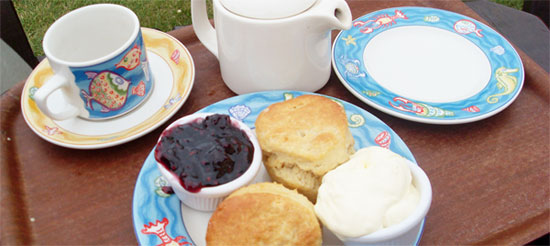 britain foodie cream tea