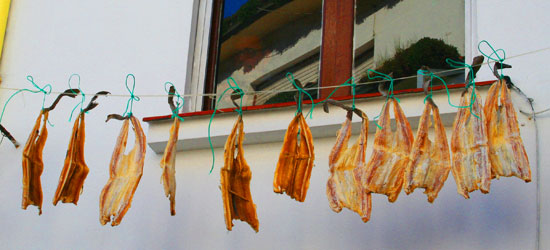 spain asturias cudillero drying fish